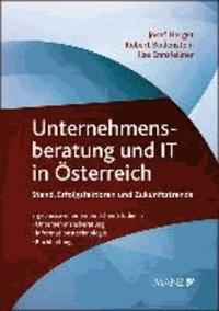 Unternehmensberatung und IT in Österreich - Stand, Erfolgsfaktoren und Zukunftstrends.