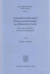 Unternehmensbezogene Effizienzanforderungen im Öffentlichen Recht - Unternehmenseffizienz als neue Rechtskategorie.