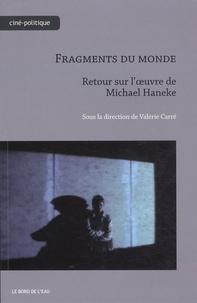 Valérie Carré - Fragments du monde - Retour sur l'oeuvre de Michael Haneke.