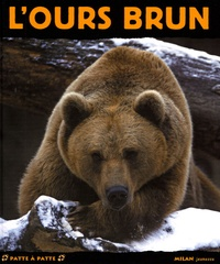 Valérie Tracqui - L'ours brun.