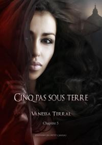 Vanessa Lamazère - Quand tout se tait - Partie 5 - Cinq pas sous terre.