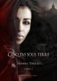 Vanessa Terral Vanessa Terral - Quand tout se tait - Partie 5 - Cinq pas sous terre.