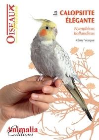 Vesque - La callopsitte élégante.
