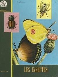 Victor Calvini - Les insectes.