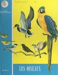 Victor Calvini - Les oiseaux.