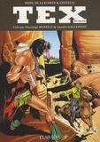 Victor de La Fuente et Fabio Civitelli - Tex mensuel Tomes 441, 442, 443 : Springfield calibre 58 ; Un ranger en péril ; Le retour du tigre noir.