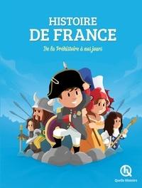 Victor Mottez et Leslie-Fleur Picardat - Histoire de France - De la Préhistoire à nos jours.