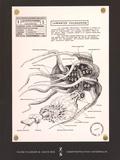 Vilém Flusser - Vampyroteuthis infernalis - Un Traité, suivi d'un Rapport de l'Institut scientifique de recherche paranaturaliste.