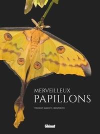 Vincent Albouy - Merveilleux papillons.