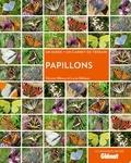 Vincent Albouy - Papillons - Un guide + un carnet de terrain.