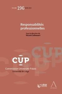 Vincent Callewaert - Responsabilités professionnelles.