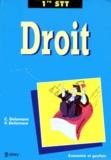 Vincent Delamare et C Delamare - Droit, dossiers - 1re STT.