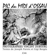 Vincent Dubourg - Le pic du midi d'Ossau.
