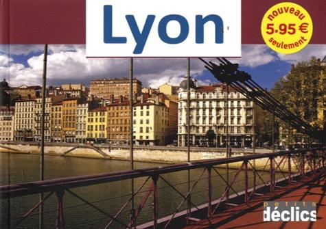 Vincent Formica - Lyon.