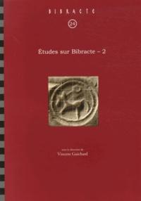 Vincent Guichard - Etudes sur Bibracte - Volume 2.