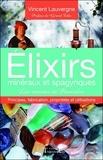 Vincent Lauvergne - Elixirs minéraux et spagyriques - Les remèdes de Paracelse - Principes, fabrication, propriétés et utilisations.