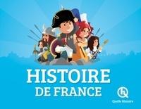 Vincent Mottez et Bruno Wennagel - Histoire de France.