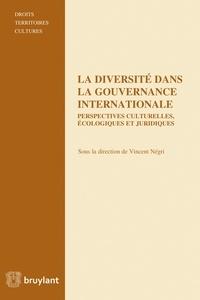 Vincent Négri - La diversité dans la gouvernance internationale - Perspectives culturelles, écologiques et juridiques.