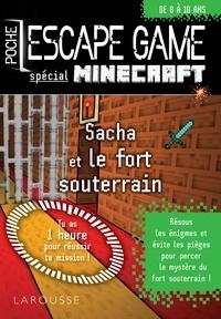Vincent Raffaitin - Sacha et le fort souterrain - Spécial Minecraft.