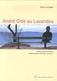 Vincent Vivès et Raphaël Dupouy - André Gide au Lavandou - Encre et Sable.