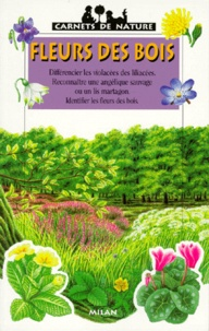 Violette Rennert - Fleurs des bois.