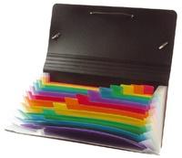 VIQUEL - Trieur ménager Rainbow class 12 positions Format chèque 26x13 cm