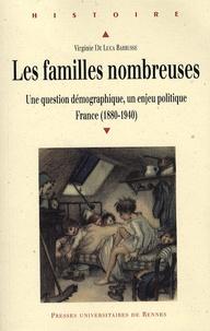 Virginie De Luca Barrusse - Les familles nombreuses - Une question démographique, un enjeu politique, France (1880-1940).