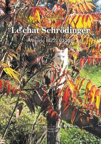 Vittorio Bizzozero - Le chat Schrödinger.