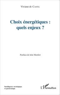 Viviane Du Castel - Choix énergétiques : quels enjeux ?.