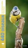 Volker Dierschke - 440 oiseaux.