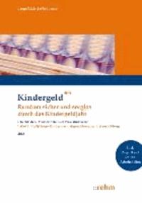 Volljährige Kinder nach abgeschlossener Erstausbildung - Rundum sicher und sorglos durch das Kindergeldjahr. Mit Online-Zugang und Online-Seminar.