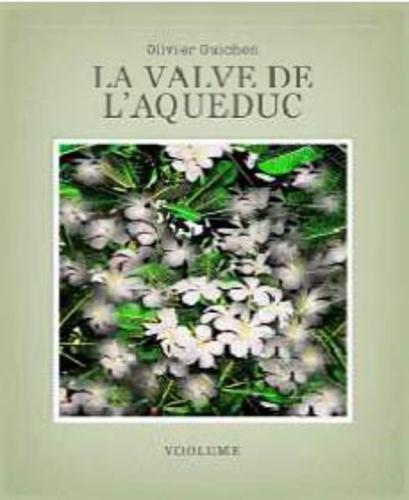 Olivier Guichon - La valve de l'aqueduc. 1 CD audio