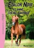 Walter Farley - L'Étalon Noir 10 - Flamme, cheval sauvage.