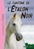 Walter Farley - L'Etalon Noir 16 - Le fantôme de l'Etalon Noir.