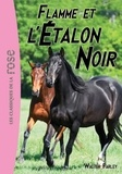 Walter Farley - L'Étalon Noir 17 - Flamme et l'Étalon Noir.