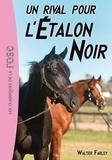Walter Farley - L'Etalon Noir Tome 14 : Un rival pour l'Etalon noir.