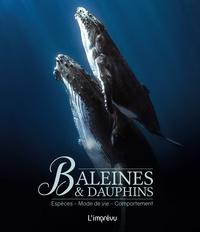 Wandrey Rüdiger - Baleines et dauphins - Espèces, mode de vie, comportement.