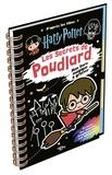 Warner Bros - Mon livre magique à gratter Harry Potter, Les secrets de Poudlard - Avec un bâtonnet en bois.