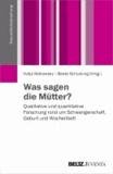 Was sagen die Mütter? - Qualitative und quantitative Forschung rund um Schwangerschaft, Geburt und Wochenbett.