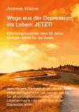 Wege aus der Depression ins Leben: JETZT ! - Erfahrungsberichte über 25 Jahre Energie-Arbeit für die Seele.