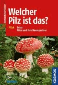 Welcher Pilz ist das? - Extra: Pilze und ihre Baumpartner.