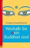 Weshalb Sie (k)ein Buddhist sind.