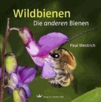 Wildbienen - Die anderen Bienen.