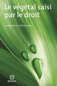 Le végétal saisi par le droit.pdf