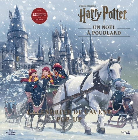Wizarding World - Calendrier de l'avent Pop-up Harry Potter.