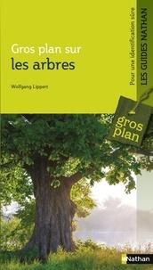Wolfgang Lippert - Gros plan sur les arbres.