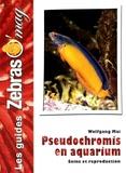 Wolfgang Mai - Pseudochromis en aquarium - Soins et reproduction.