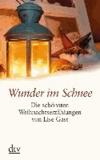 Wunder im Schnee. Die schönsten Weihnachtserzählungen von Lise Gast. Großdruck.