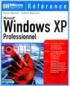Xavier Bouchet et Ludovik Dopierala - Windows XP professionnel.