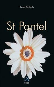 Xavier Tacchella - Saint-Pantel.